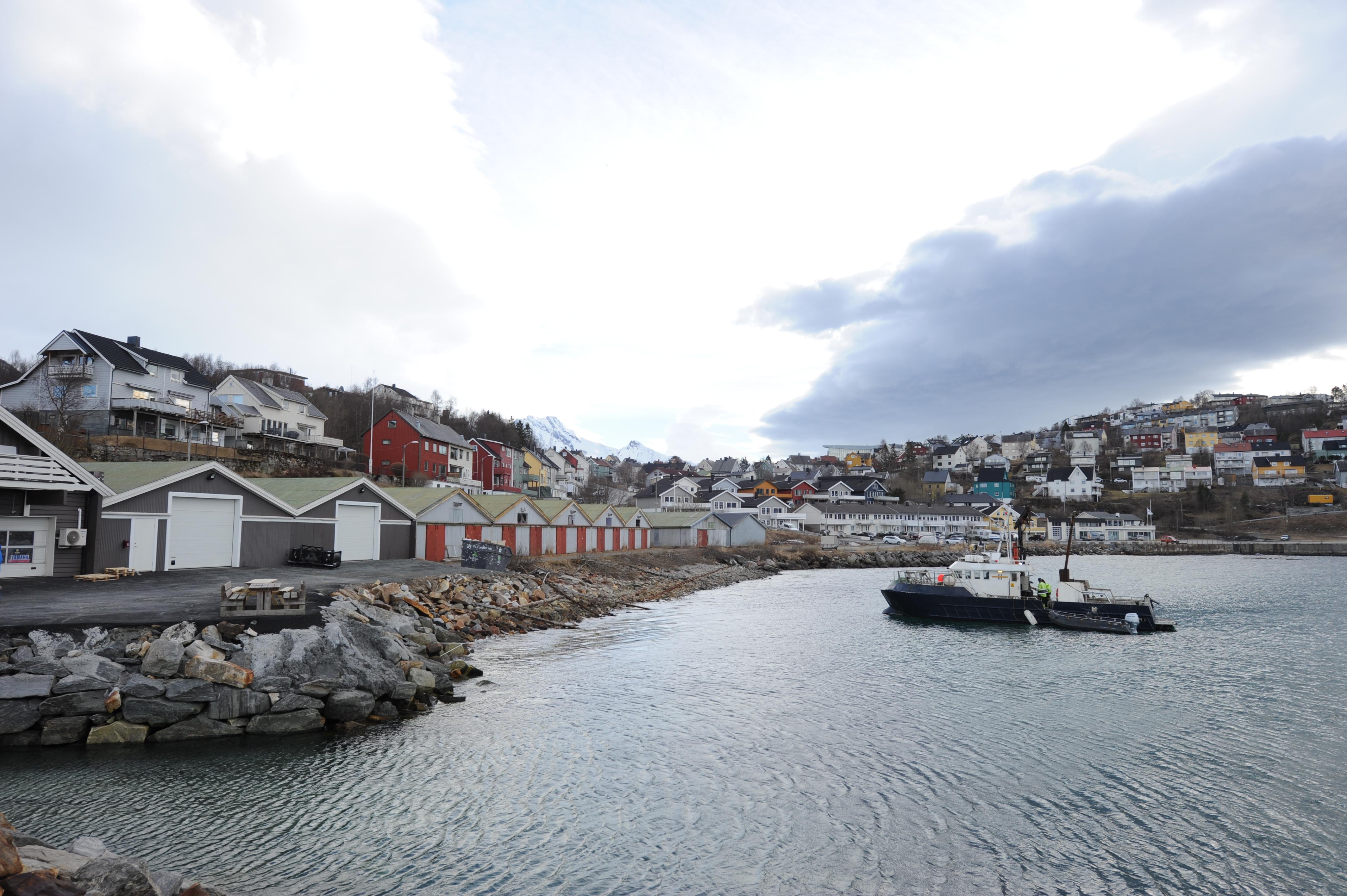 Akkurat nå foregår det boring av sjøgrunnen foran tomten i Vassvik. Foto: Rune Dahl